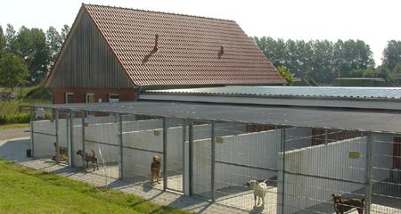 Tierheim Ge
